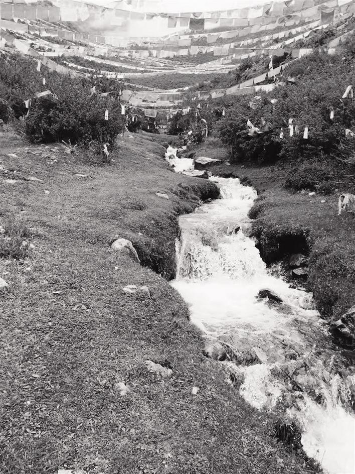 四月的拉萨出发,踏青旅行处处是美景